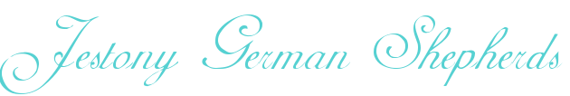 www.jestonygermanshepherds.co.uk Logo
